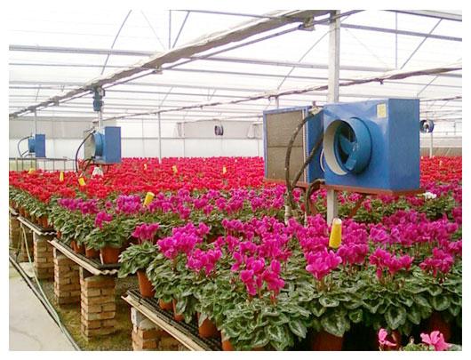 园艺大棚加温方案